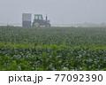 八ヶ岳高原野菜の霧の中の穫り入れとトラクター 77092390