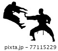 格闘する空手家のシルエット 77115229