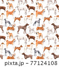 Beautiful seamless pattern with cute watercolor hand drawn dog breeds Cocker spaniel Greyhound Hound Basenji and Russian Greyhound Whippet . Stock illustration. 77124108