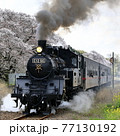 春の真岡鉄道 77130192