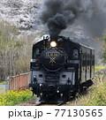 春の真岡鉄道 77130565