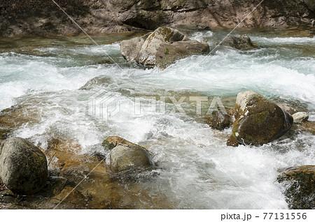 那須の渓流の流れの風景 77131556
