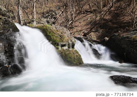 仙の滝 77136734