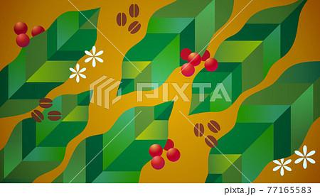 コーヒーの葉と実、豆、花のイラスト素材 77165583