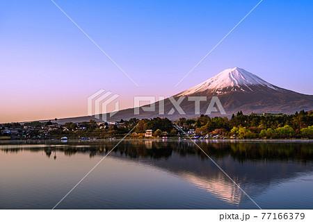 (山梨県)早朝の河口湖に映る逆さ富士 77166379