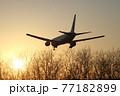 飛行機のある風景(函館空港)夕日に向かって着陸 77182899