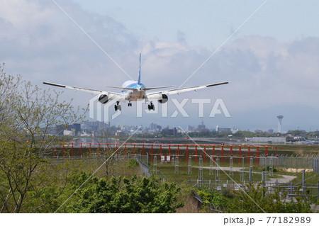 飛行機のある風景(函館空港)着陸 77182989