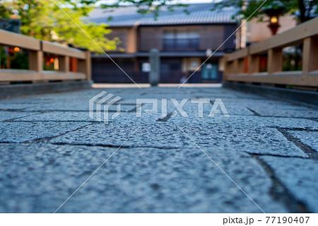京都市東山区祇園白川の新緑を撮影 77190407