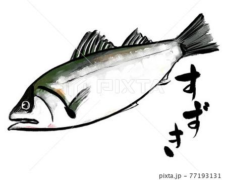 水彩画風のすずきと筆文字 77193131