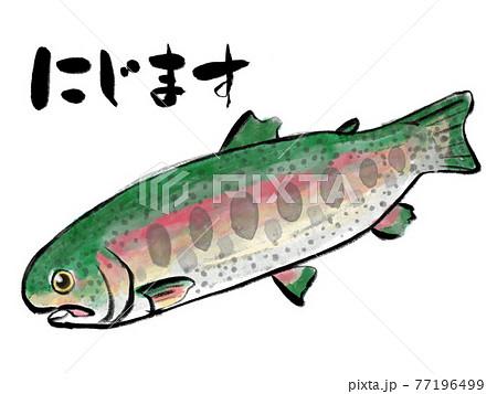 水彩画風ニジマスと筆文字 77196499