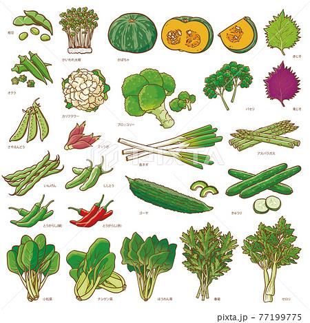 野菜セット1 77199775