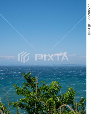 初夏の青空と東京湾の青い海 5月 77200577