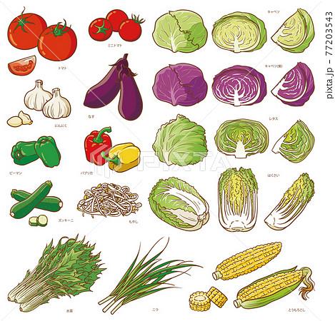 野菜セット2 77203543