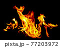Fire flames on black background. 77203972