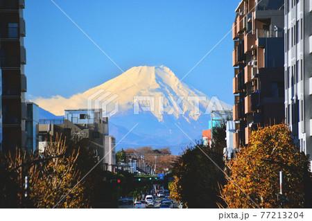 東久留米駅の富士見のテラスから見る富士山 77213204