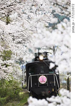 大井川鐵道沿線の旅 春の大和田駅 77213972
