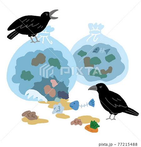 家庭から出たゴミ置場のゴミを荒らすカラス 77215488