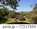 群馬県 春の赤城自然園 77217034