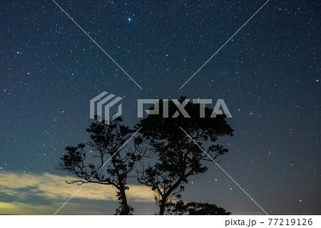 秋吉台 満天の星 77219126