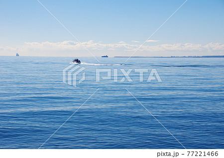 東京湾を行くモーターボート 77221466