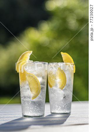 レモンサワー レモン酎ハイ  酎ハイレモン 77230027