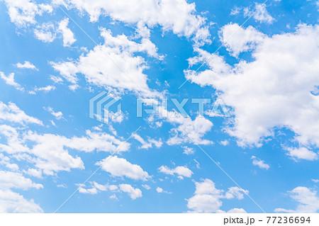 春の青空(五月) 77236694