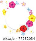 南国の花ハイビスカスのフレーム ベクターイラスト 77252034