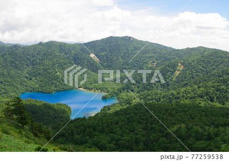 長野県志賀高原にある裏志賀山より見る神秘的なブルーが魅力の大沼 77259538