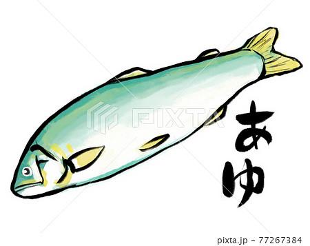 水彩画風あゆと筆文字 77267384