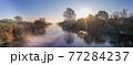 「埼玉県」見沼田んぼの朝霧の風景 77284237