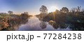 「埼玉県」見沼田んぼの朝霧の風景 77284238