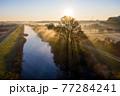 「埼玉県」見沼田んぼの朝霧の風景 77284241