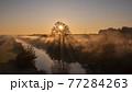 「埼玉県」見沼田んぼの朝霧の風景 77284263