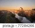 「埼玉県」見沼田んぼの朝霧の風景 77284266
