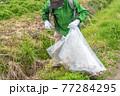 環境保護活動 ゴミ拾い 77284295