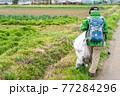 環境保護活動 ゴミ拾い 77284296