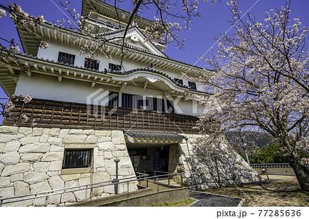 河原城 鳥取県鳥取市 77285636