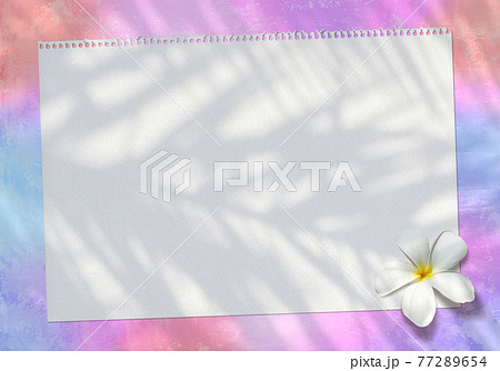椰子の影が写るトロピカルイメージ、スケッチブックと白いプルメリアの花 77289654