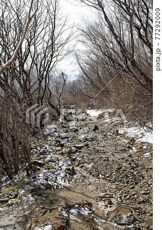 栃木県残雪の残る那須登山道の風景 77292009