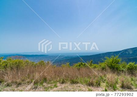 矢倉岳(箱根)の山頂から見た相模湾 77293902