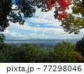 京都洛西金蔵寺の秋 77298046