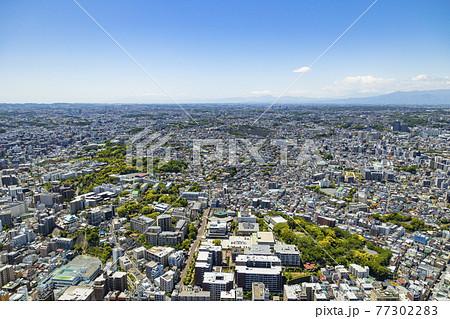 横浜ランドマークタワー展望台からの風景 77302283