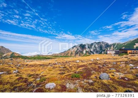 秋の立山室堂の美しい風景 77326391