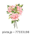 Pink flowers in pastel colors. Bouquet of flowers isolated on white background 77333198