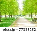 【ドイツ】フランクフルト 公園 散策路 77336252