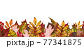 Autumn leaf seamless border. Watercolor illustration. Red, orange fallen leaves endless ornament. Thanksgiving natural decoration. Bright fall foliage elements seamless border. On white background 77341875