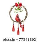 Winter festive rustic wreath with red cardinal bird, mistletoe. Watercolor illustration. Beautiful round season decorative vine frame with mistletoe, red boho style pendants. On white background 77341892