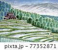 棚田のある風景画 77352871