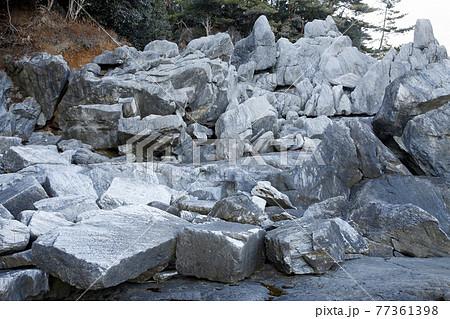 【地学教材】2月三陸海岸の大理石海岸 -古生代大理石の石切り場- 77361398