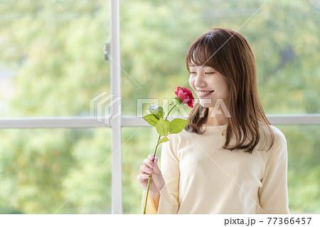 笑顔で薔薇の匂いを嗅ぐ若い女性 77366457